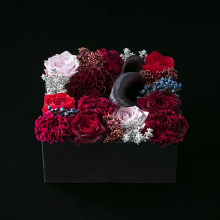 Luxury Box -DARK ROMANCE design-