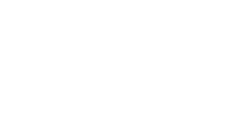 saint jordi flowers the decorator