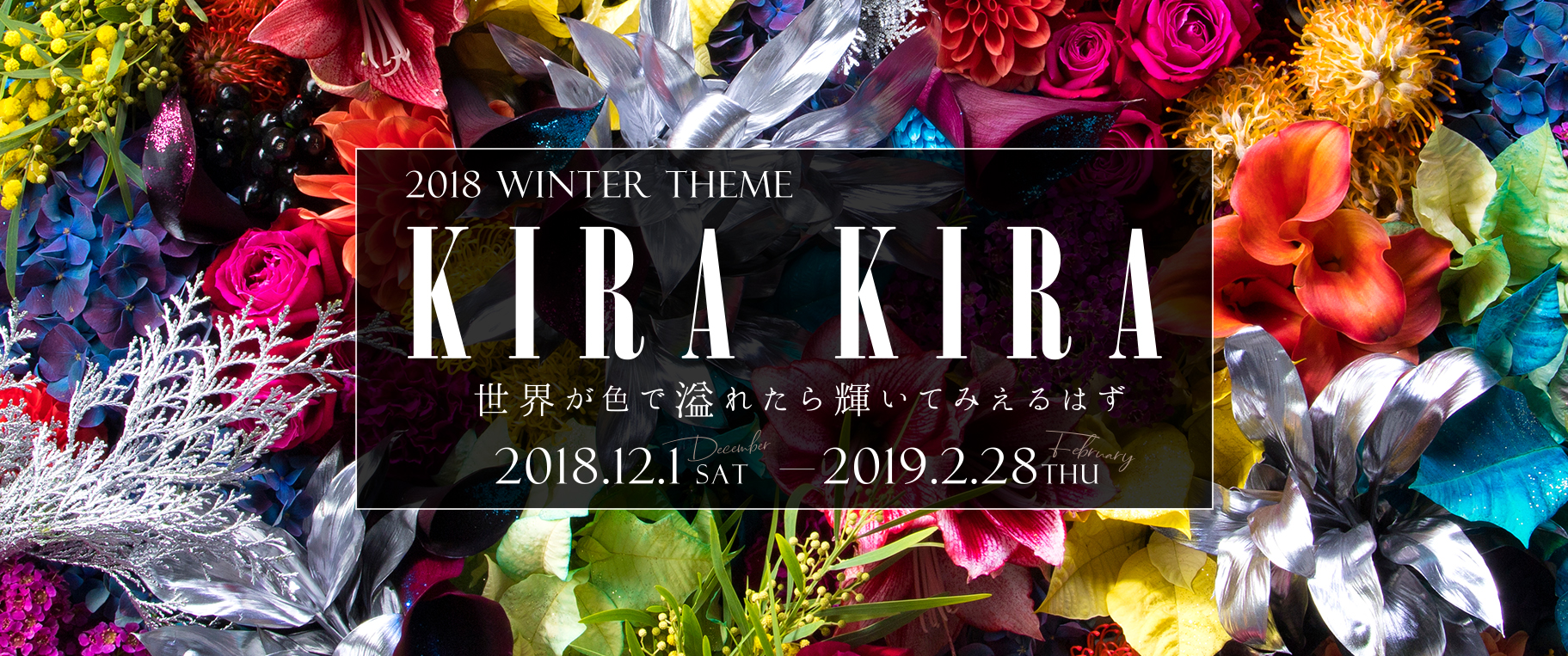 KIRA KIRA / 2018 Winter theme