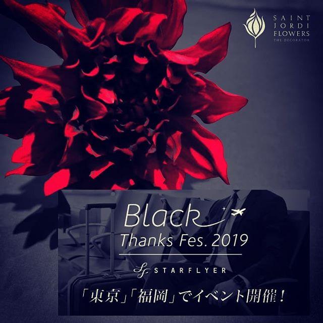 STARFLYER Black Thanks Fes.2019